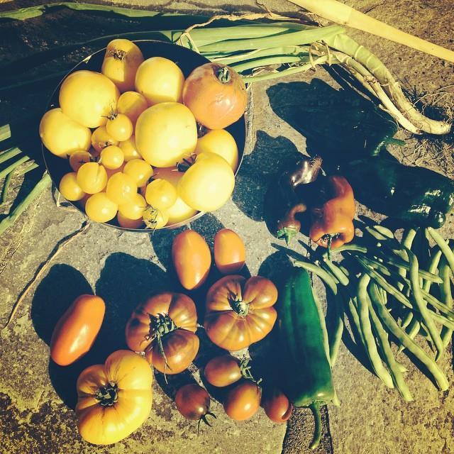 garden.food.crabby.abby
