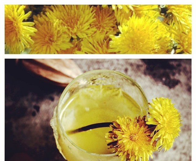 Detoxifying Dandelion Tea