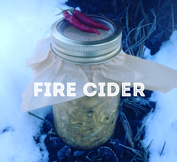 Fire Cider: Good for Whatever Ails Ya