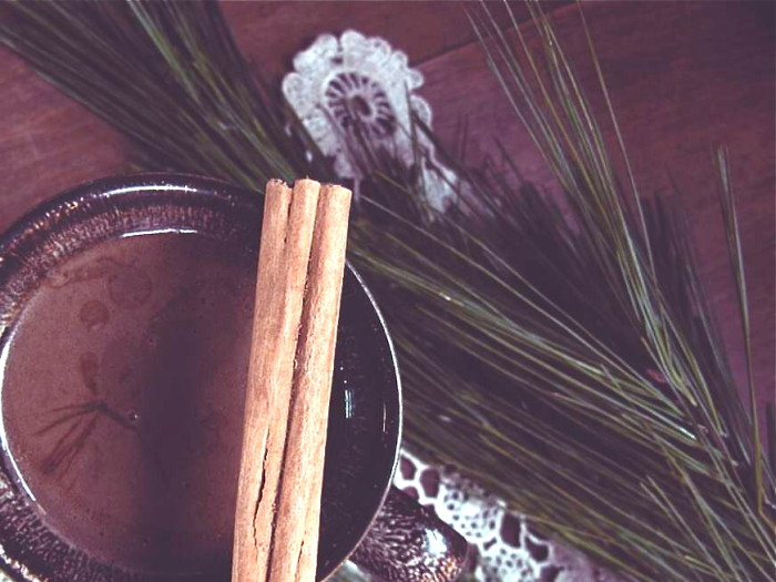 Medicinal Mushroom + Halva Hot Cacao