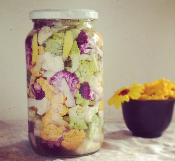 Ferment My Food: Supporting the Microbiome